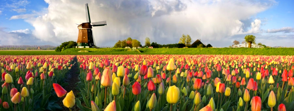 Explore the waterways of Holland and Belgium